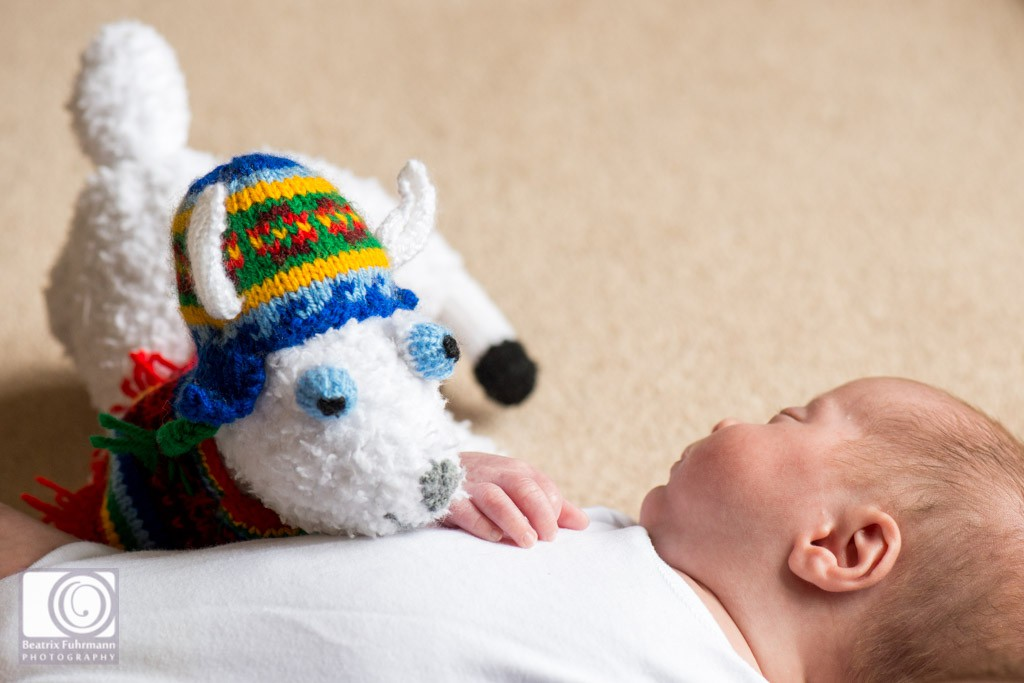 Stuffed animal llama on baby's tummy
