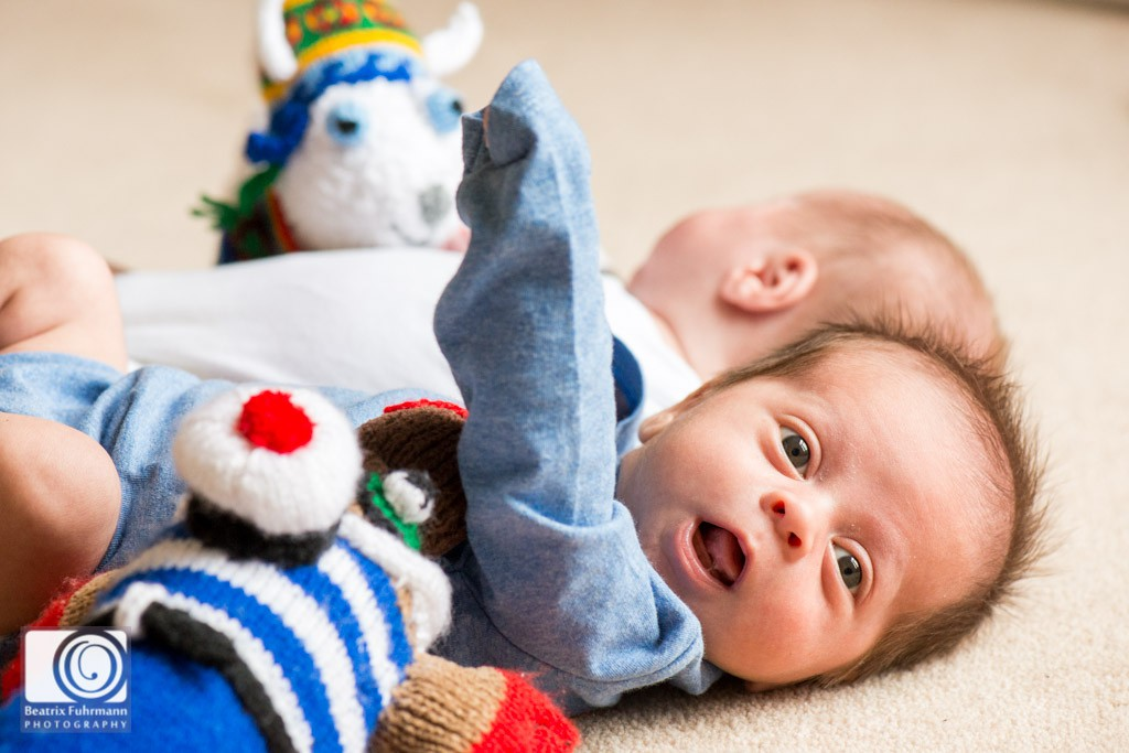 twin baby boys with knitted, stuffed animals