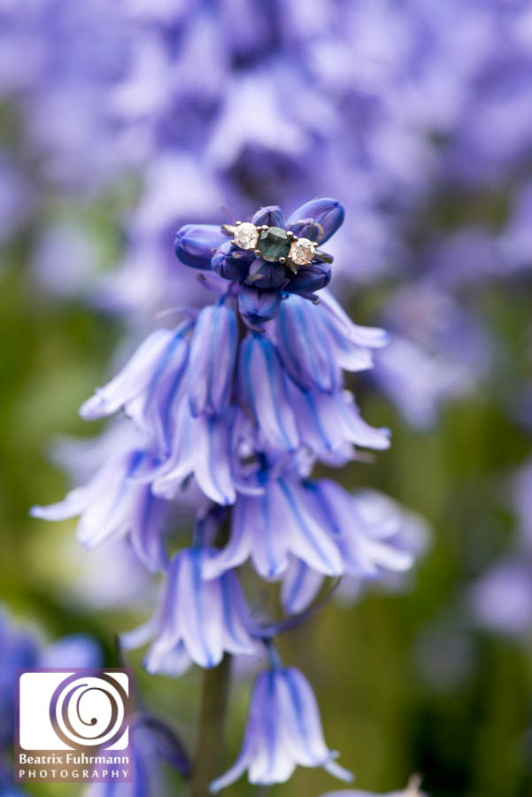 Engagement ring on a bluebell