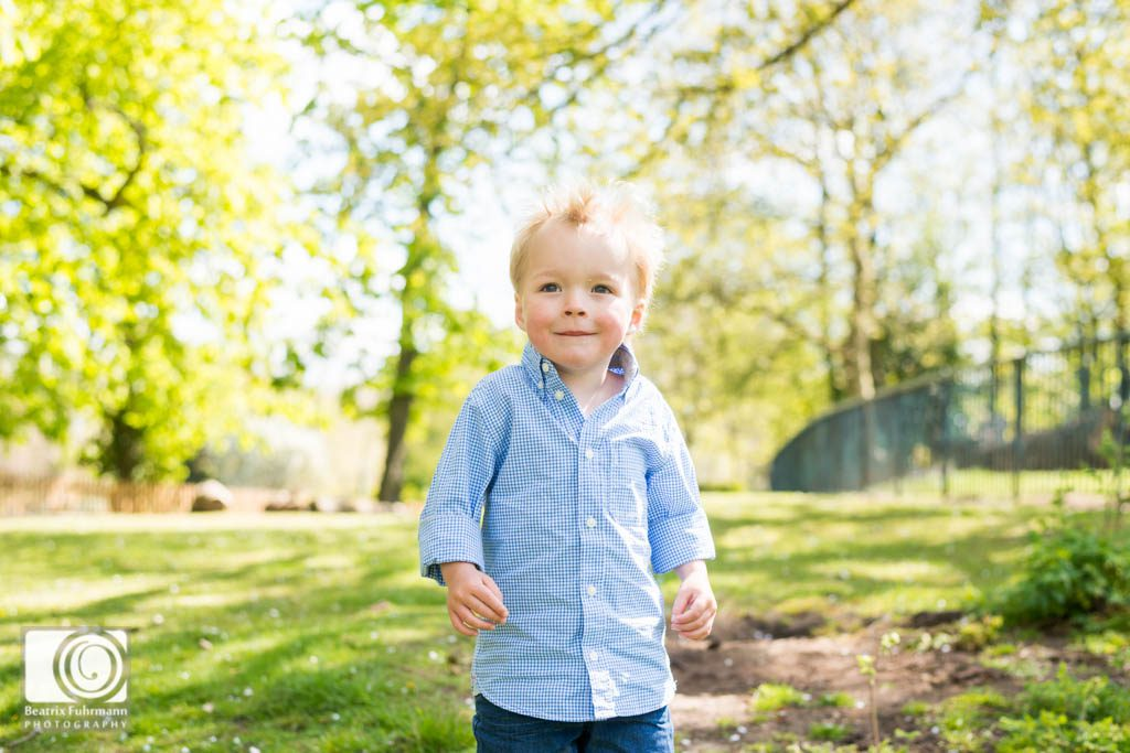 Little boy surrounded by trees