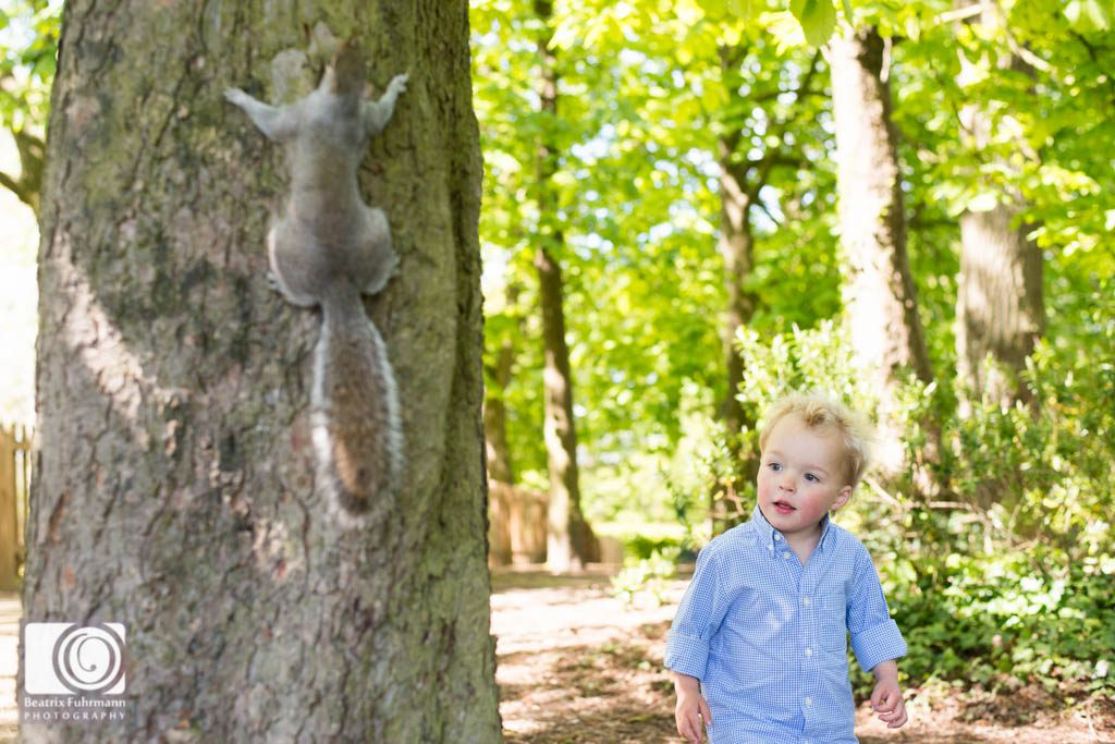 Toddler and squirrel