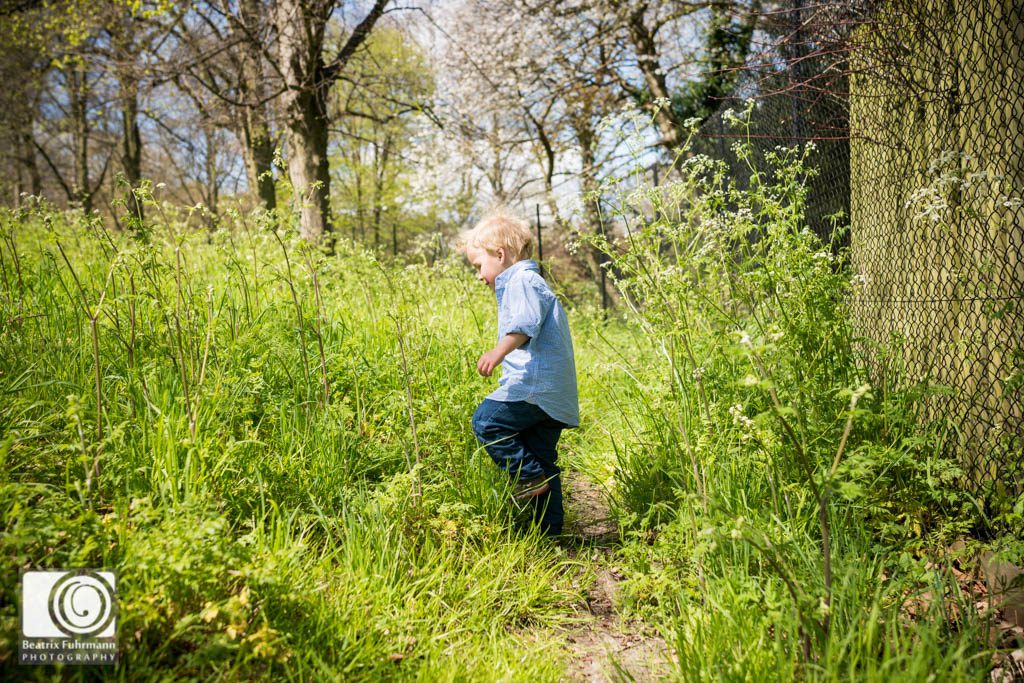 Boy walking through high grass