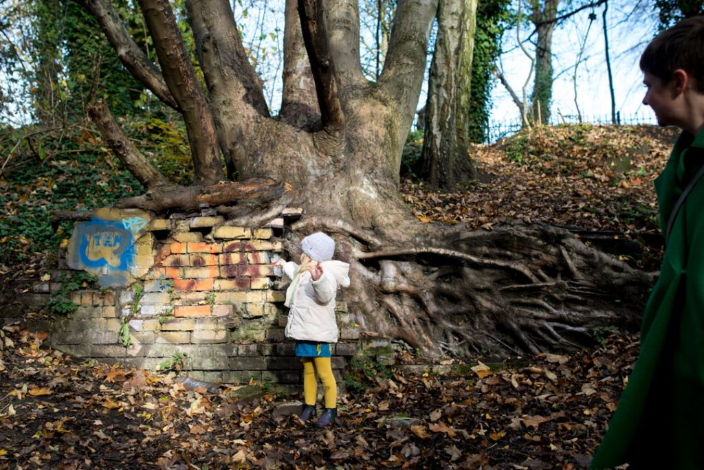 Girl standing at the bare roots of tree on the Parkland Walk, Crouch End family photographer