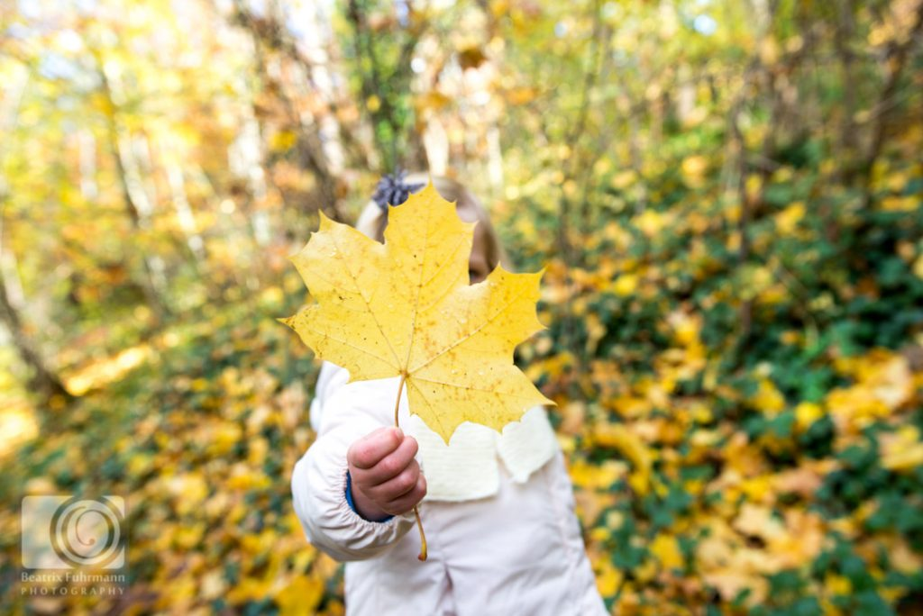 Girl showing yellow autumn leave - Crouch End family photography