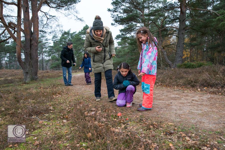 2 Mädchen zeigen ihrer Mutter einen Fliegenpilz in der Heide