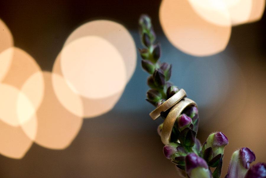 Nahaufnahme der Eheringe auf einer Pflanze, mit verschwommenen Lichtern der Hochzeitsfeier